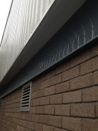 installation of bird spiking to commercial unit