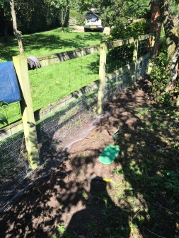 installing wire mesh to keep rabbits out of a garden