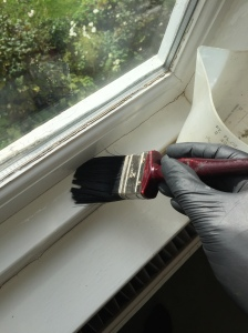 Treatment to window casings for Cluster Flies