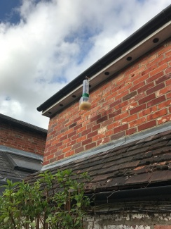 Installing wasp catchers